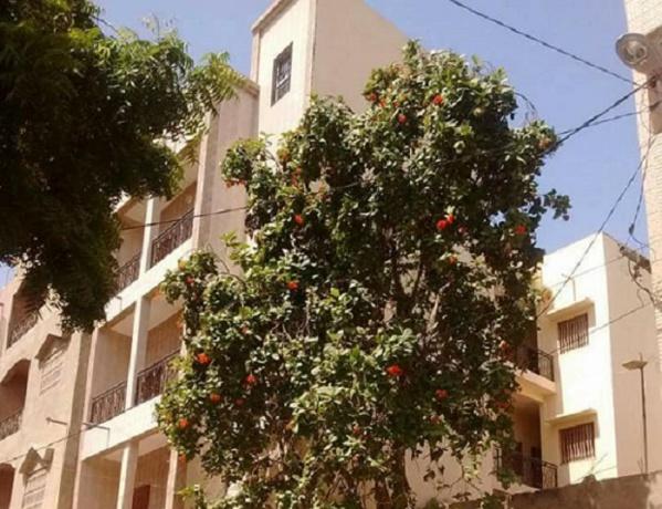 DAKAR: Baldé a pris en location un immeuble R+3  pour les étudiants de Ziguinchor