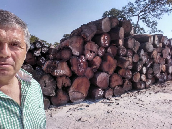 Scandale: le bois Casamançais en Gambie, un blanc revendique...