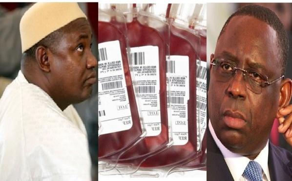 Scandale: le Sénégal vend une importante quantité de sang à la Gambie