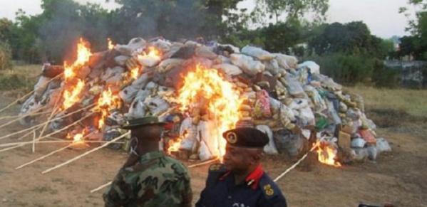 Guinée-Bissau: Les 800 kg de cocaïne saisis…