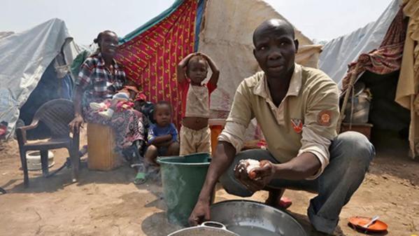 """RAPPORT DE GREENPEACE:  """"De grandes entreprises européennes complices de l'insécurité alimentaire en Afrique de l'Ouest"""""""