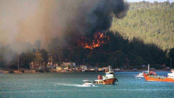 Incendies en Turquie: des touristes évacués à Bodrum
