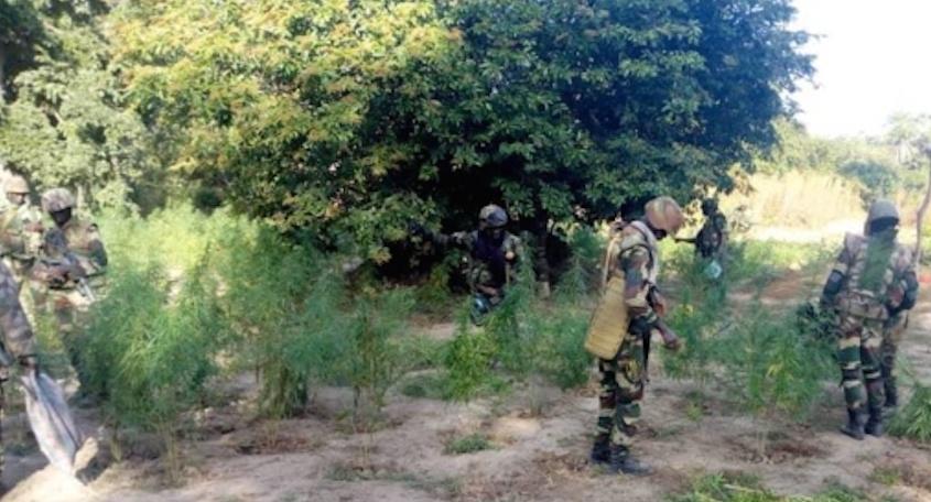 Nord - Bignona :  Le corps d'un jeune découvert, ses parents accusent l'armée...