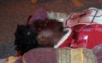 Dernière minute: Un jeune tué à coups de ciseaux à  Bignona