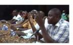 Baccalauréat 2021: Ansou Sané organise une synthèse en philosophie au profit des candidats