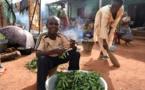 Le PAM et la FAO s'inquiètent de l'insécurité alimentaire en Centrafrique