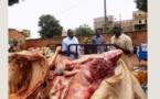 Technopole; une bande d'abatteurs clandestin d'ânes arrêtée