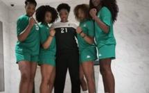 Handball : Le Sénégal face à la Guinée, jeudi