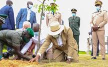 """Macky Sall demande aux Sénégalais de lutter contre la """"déforestation"""""""