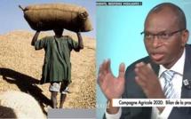 """Pr Moussa Baldé sur le prix du KG d'arachide fixé à 250 FCFA:"""" Le président Sall vient de monter, qu'il faut d'abord l'émergence du monde rural..."""""""